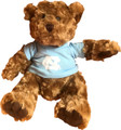 Market Identity Carolina Bear - Brown 11 inch