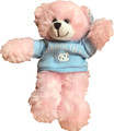 Plushland Carolina Bear - Pink 8 inch