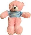 Plushland Carolina Bear - Pink 13 inch
