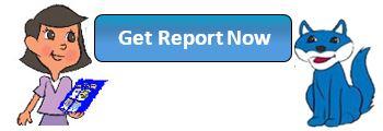 get-report-now.jpg