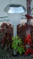 2-Pack Outdoor Garden Stainless Steel Frosted Lens Solar Light