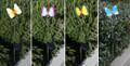 2-Pack Garden Decor Butterfly Plastic Art Stainless Steel Solar Light