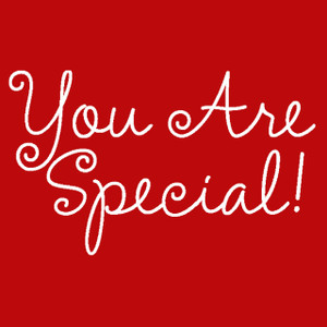 ADD this T-Shirt Design -YOU ARE SPECIAL - We'll Dress-Up your Stuffed Animal in this T-Shirt
