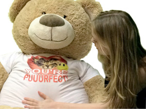 Giant 5 Foot Teddy Bear Soft Wears Tshirt with Image of Cat that Reads YOU ARE PUUURFECT