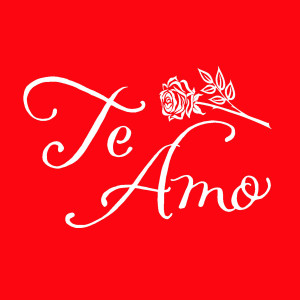 ADD this T-Shirt Design TE AMO and We'll Dress-Up your Stuffed Animal in this T-Shirt