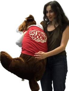 Giant Stuffed Bulldog 42 Inches Dark Brown Color Soft Big Plush Dog Get Well Soon