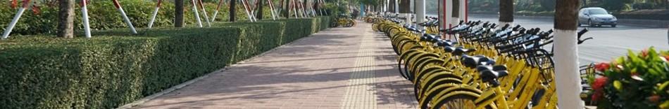 9-china-bikes.jpg
