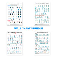 BUNDLE: Tai Chi Wall Charts