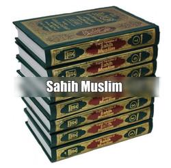 7 vol set Sahih Muslim