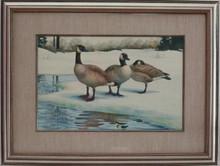 """Canada Geese Trio"" by Janeen Schissler"