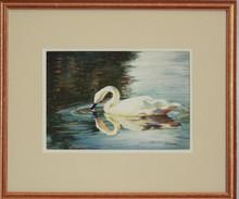 """Swan"" by Jean Halverson"