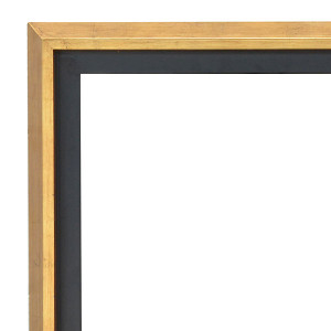 Modern Float Frame 36X72 Gold