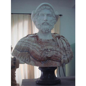 Multi Marble Bust A