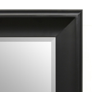 Silvery Woods Mirror 48X60 Flat Black with Tarnished Silver Finish