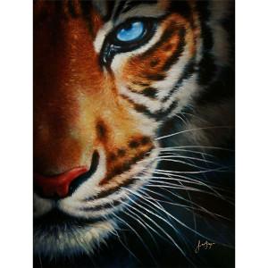 Tiger Gallery Wrap 17