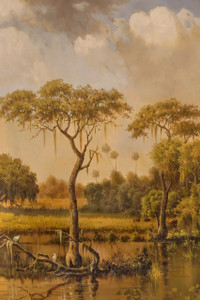 Everglades III Gallery Wrap