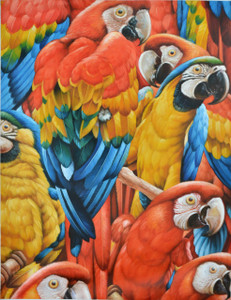 Red and Blue Macaw Gallery Wrap