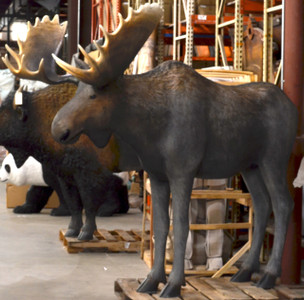 LifeSize Moose Statue Realistic Animal Sculpture