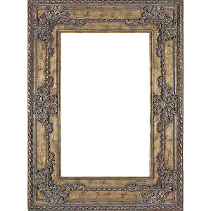 Chateau Breanna Frame 36X48 Tiger Gold Leaf