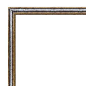 Aria Frame 36X48 Silver and Gold