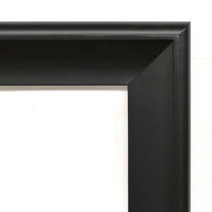 Silvery Woods Frame 48X60 Flat Black with Tarnished Silver