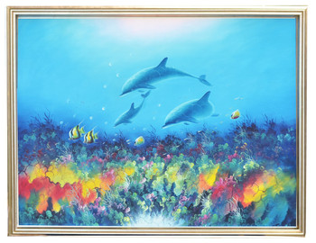 Visionary Dolphins Sea Family
