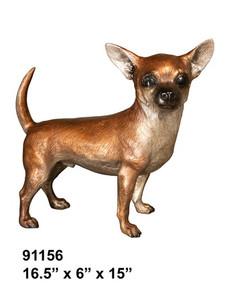 Chiwawa Dog Standing