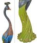 Multicolor Grand Peacock
